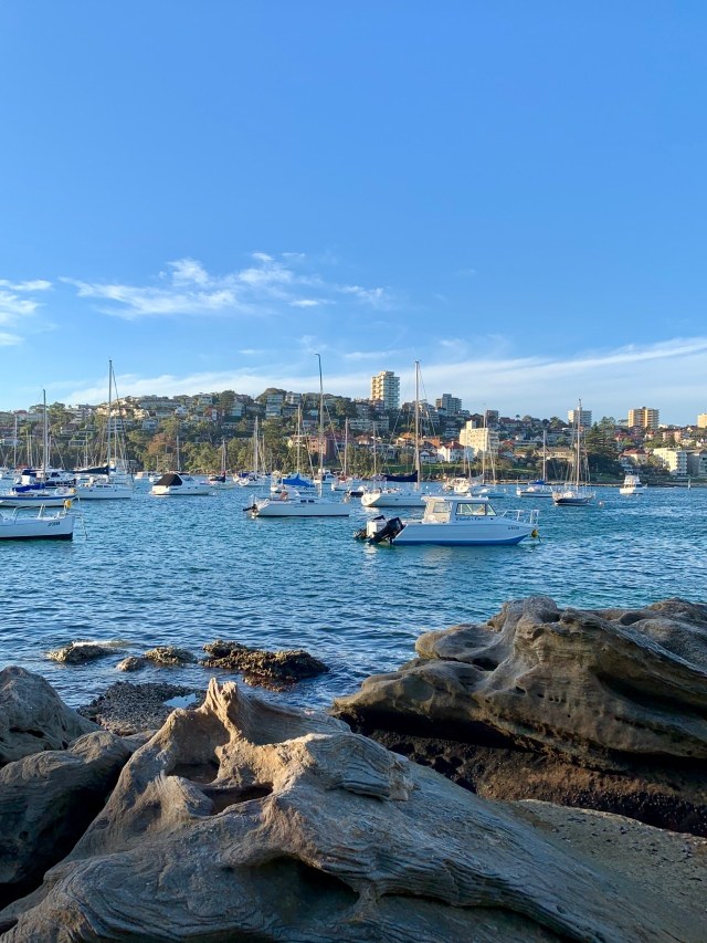 Manly Harbor area